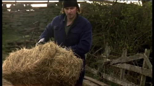 hey, hey, hey...hay